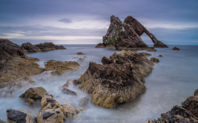the bow fidle rock