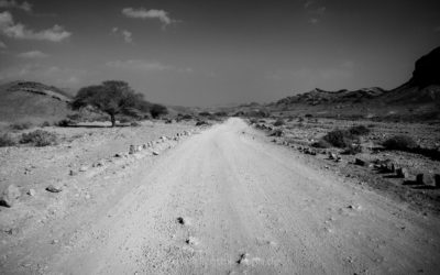 roads . . .